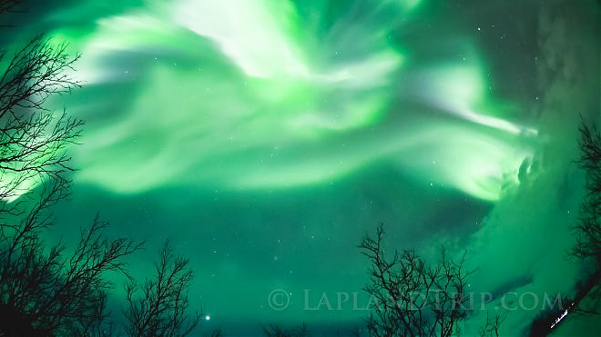 【Sweden】Abisko Aurora photo trip