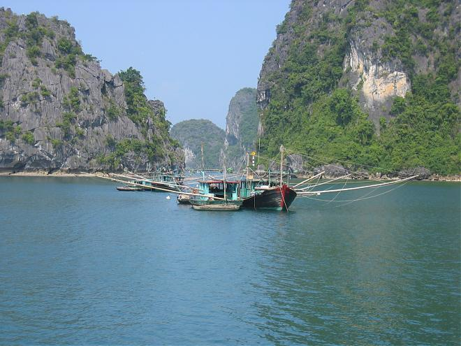 Cruise in Ha Long Bay Tour